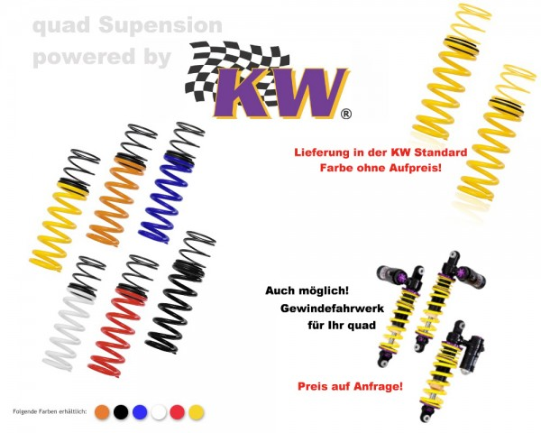 KW Suspension Tieferlegungsfedern rot 25003406 Suzuki LT-A 750i King Quad ab Bj. 10-